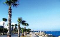 Oferte Limassol